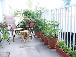 balcony gardens. Balcony Garden Design Ideas Gardens S