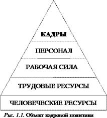 Курсовая работа Кадровая политика организации  Объект кадровой политики рис 1 1 характеризуется различными понятиями и определениями как термин человеческий фактор обозначающий совокупность