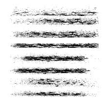 Grunge Brush Pack Illustrator Free Vector Image In Ai And Eps Format