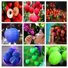 Compare Prices on <b>Lychee</b>- Online Shopping/Buy Low Price <b>Lychee</b> ...
