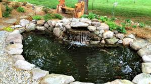 how to clean a koi pond. Unique Koi Koi Pond With How To Clean A Koi Pond