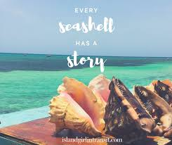 sea shell quotes travel quote every seashell has a story travel