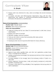Cv For Cabin Crew With No Experience Great Resume Sample 94