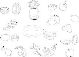 Dog Bowl Coloring Pages Fruit Basket Printable For Kindergarten