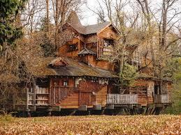 magical alnwick treehouse restaurant