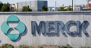 Merck pulls plug on two potential COVID vaccines | Business and ...