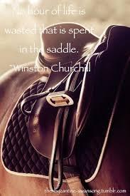Winston Churchil Bilder Pferde Pferde Sprüche Englisch Und