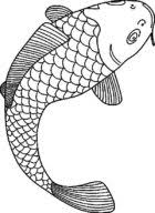 Small Picture Fish Coloring Pages Free 1392 Animal Coloring ColoringAce