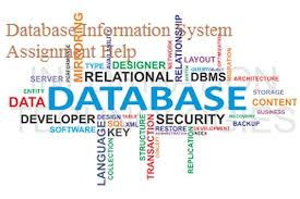 database information system assignment help get %off database information system assignment help