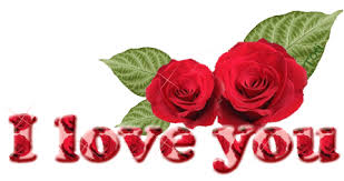 i love you with roses gn521