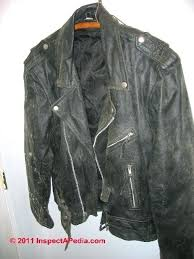 leather jacket remove mold from fabric photo of on a c photographic guide to growth or in