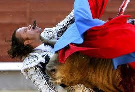 bull fighting injuries. Wonderful Fighting Injuries Intended Bull Fighting H