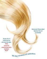 Drugs In Hair Chart Hair Follicle Drug Test