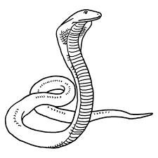 snake clipart black and white. Beautiful Black Free Snake Clipart  To Snake Clipart Black And White I