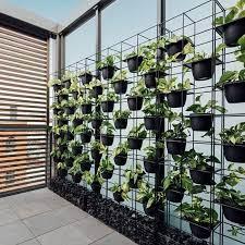 vertical garden screen indoor outdoor