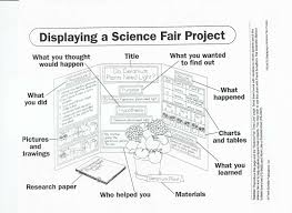 science fair essay research paper of science fair project my spm model essay dialogue obama speech liveanalytical essay on the giver