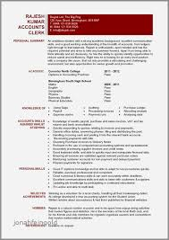 Resume Summary Examples Entry Level Unique √ 60 Awesome Resume Summary Examples Entry Level Accounting