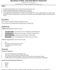 Mock Resume 18 Wonderful Typical Resume Terribly Mock Resumes