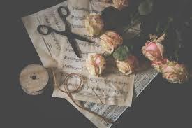 Gratis Afbeeldingen Roze Rozen Schaar Touw Muzieknoten