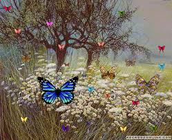 Resultado de imagem para gifs borboletas