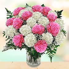 types of flowers in bouquets. carnation flowers and sentiments behind gifting them types of in bouquets