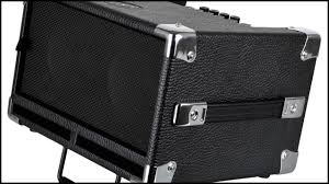 what bass players say about which speakers and cabs work best live