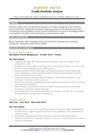 Sample Resume For Financial Services Portfolio Analyst Sample Resume Ha