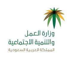 العمل» تكشف حقوق العامل في الإجازات الرسمية والشخصية.. تعرف عليها - أخبار  السعودية