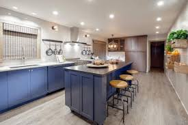 Fresh Kitchen Remodel With Blue Cabinets and Wide Plank Hardwood Floors