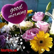 sweet good morning flower wallpapers for whatsapp