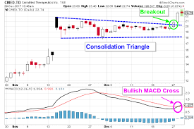 Cannimed Stock Chart Cannimed Otcmkts Cmmdf Stock Chart Points To Further Gains