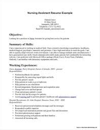 Nursing Resume Templates For Microsoft Word Arixta