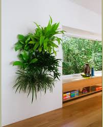 ... Large-size of Sightly Living Wall Planter Green Wall Vertical  Gardenwith Green Wall Watch More ...