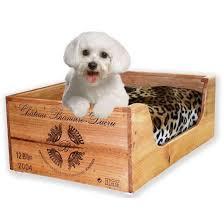 fancy pet furniture. dog bedssmall bedscat bedspet bedsunique luxury pet fancy pet furniture