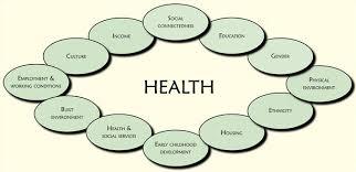 Naccho Aboriginal Health News Alert Download Senate Report