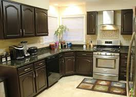 Kitchen Cabinet Colors Ideas Custom Inspiration