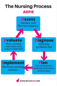 must see nursing process pins nursing assessment nursing 8 most important nursing concepts every nursing student must master