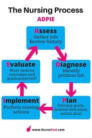 must see nursing process pins nursing assessment nursing 8 most important nursing concepts every nursing student must master