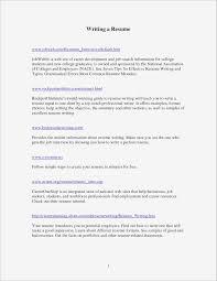 19 Awesome Resume Summary Statement Examples | Vegetaful.com