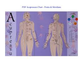 Book Acupressure Chart Points Meridians New 2018
