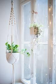 dynamic macrame plant holders