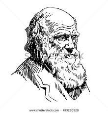 Charles Darwin Stock Images, Royalty-Free Images & Vectors ...