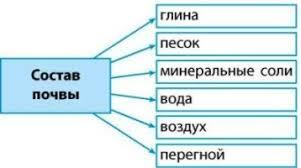 Состав почвы класс окружающий мир состав почвы 3 класс