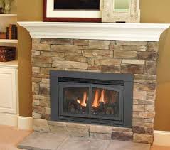 Ventless Gas Fireplace Insert | family room? Description from  pinterest.com. I searched