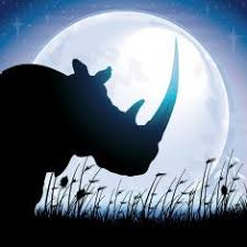 Image result for rhino dreaming of moon