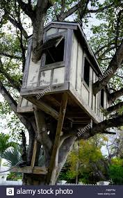 Kids Tree house in Key West Florida USA travel Stock Photo 89384532