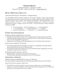 resume for human resources manager hr executive resume example