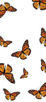 Best Butterfly iPhone 11 HD Wallpapers ...