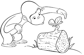 Coloring Pages For Toddlers On Monkeys Printable Coloring Sheet