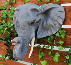large 20 long elephant head bust